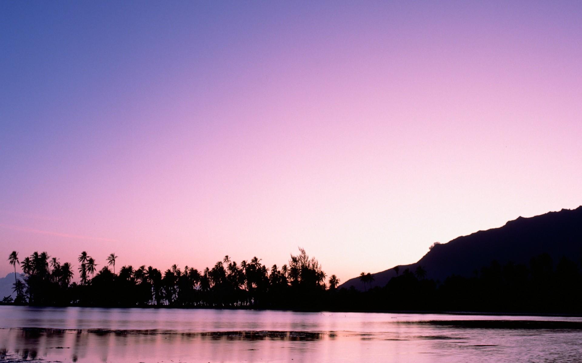 关于夜河资源网